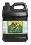 Pura Vida Bloom 10L (2/cs)