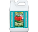 FoxFarm Grow Big Hydro Gallon